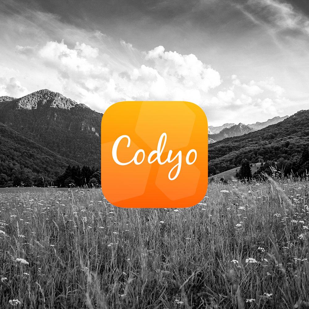 codyo Portfolio Bild
